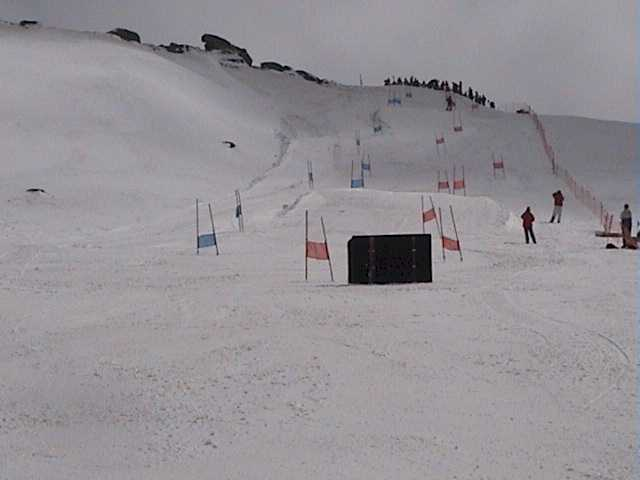 Dual Slalom - Ski Patroller Race Course in the Basin yesterday