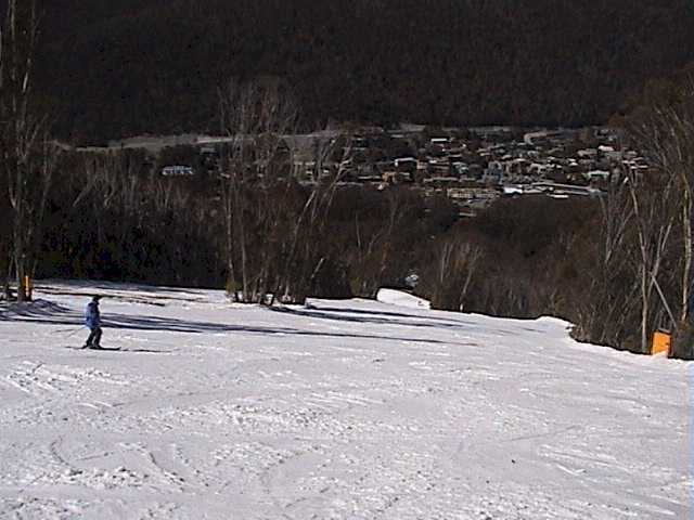 The steep section of High Noon (skiers' left is closed after the snow was pushed to the right)