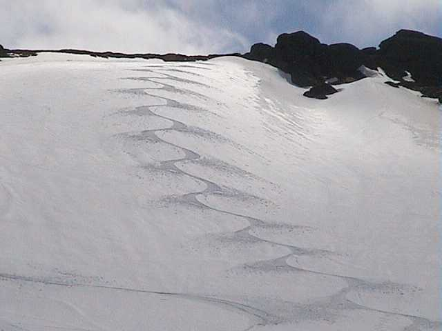Ben's tracks above Cruiser chair on Saturday
